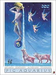 image is of aquarius the water bearer showering pigs in celebration of eastern meets western astrology for New Moon in Aquarius and Chinese New Year of the Earth Pig Year 2019